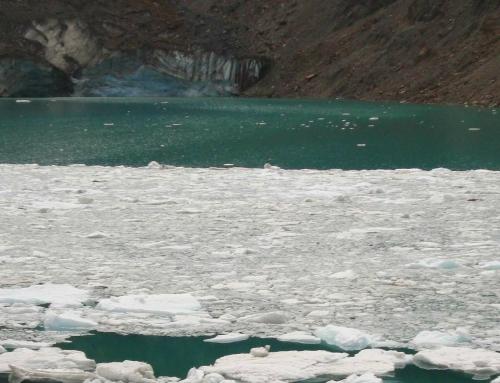 Conociendo cómo son y quiénes habitan los ambientes acuáticos asociados al Glaciar Torrecillas (Parque Nacional Los Alerces)
