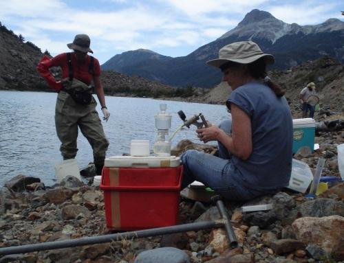 Estudian la ecología y biodiversidad del glaciar Torrecillas