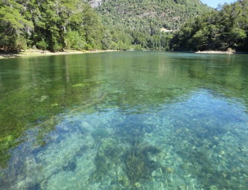 Dia mundial del agua: EL AGUA Y EL EMPLEO