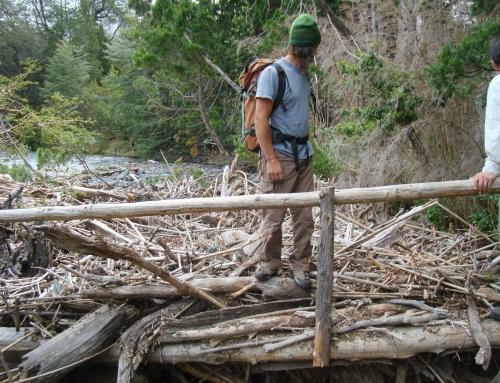 Sendero tres lagos cuatro rios. Parque Nacional Los Alerces