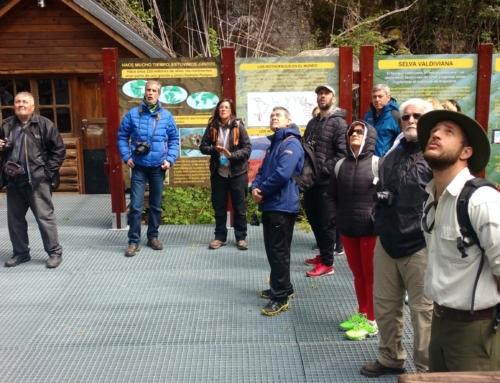 Se normaliza el servicio al Bosque de Alerces Milenarios